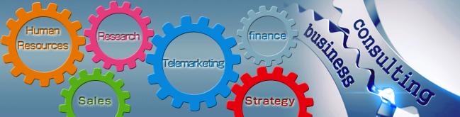 「戦略策定」「市場調査」「テレマーケティング」「人材確保」「ファイナンス」「節税対策」「営業代行」